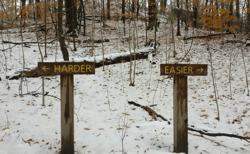 2-signs-in-snowy-woods
